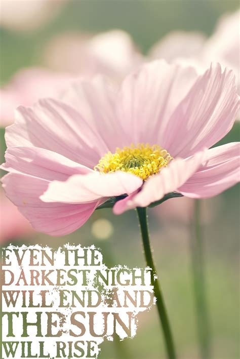 Flower quotes quotesgram with 28 more ideas flower quotes quotesgram pretty flower quotes quotesgram mightylinksfo