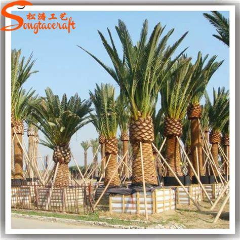 Trees For Sale Cheap - guangzhou wholesale cheap artificial coconut decorative