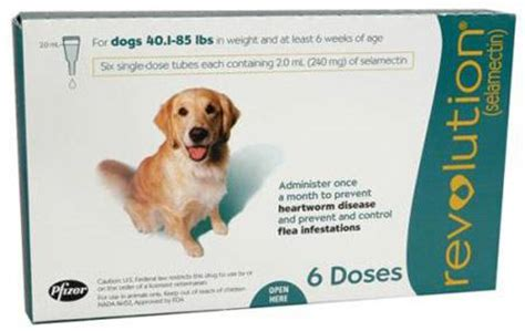 ivermectin dosage for dogs ivomec dose for dogs