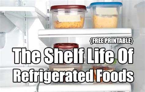 Shelf Of Refrigerated Foods by The Shelf Of Refrigerated Foods Free Printable Shtf Prepping Central