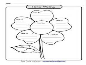 essay brainstorming template writing activities