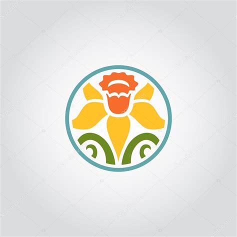 simbolo fiore daffodil simbolo galles fiori idea immagine