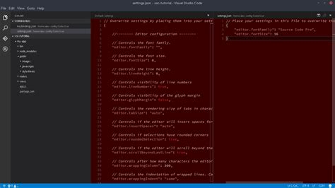 format file in visual studio code getting started with visual studio code vsc on linux