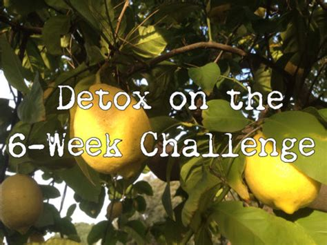6 Week Detox by Detox On The 6 Week Challenge Fit For Solutions