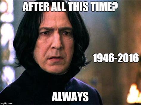 That Is All Meme - snape imgflip
