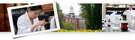 Samford Pharmacy Mba by Mcwhorter Faculty Directory