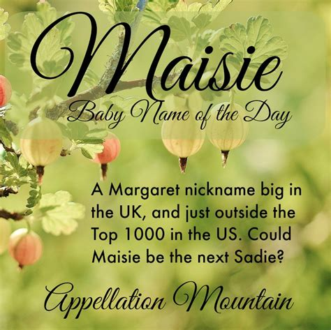 what does the name maisie baby name of the day appellation mountain