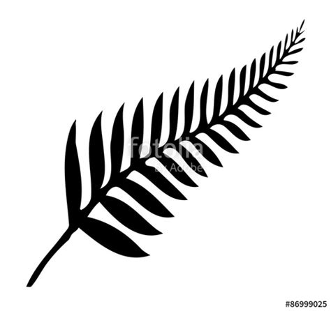 quot silver fern of new zealand quot stock image and royalty free