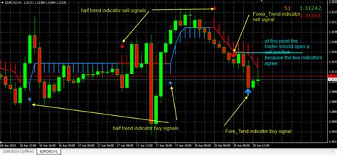 half trend forex trend profit indicator forexobroker