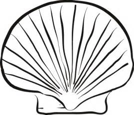 shell coloring pages free coloring pages of sea shells