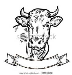 cow drawing stock images royalty free images amp vectors