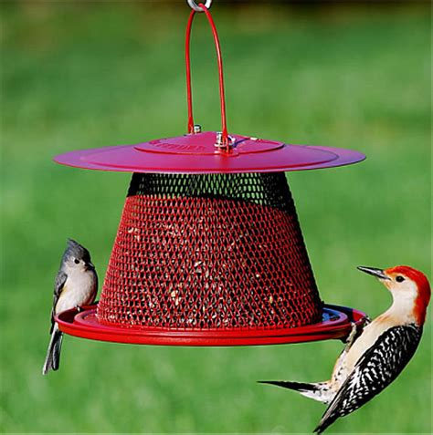 bird feeders for cardinals driverlayer search engine
