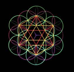 The Life Of A Flower - flower of life pictify your social art network