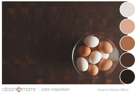 robin photography neutral color scheme brown color inspiration clickin moms blog helping you