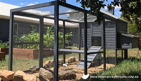 backyard chicken coops australia all about our chicken coops for sale