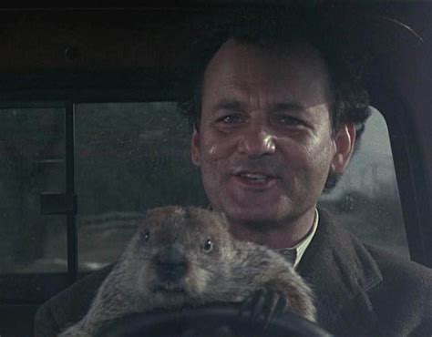 groundhog day horror bill murray s best quotes pictures pics