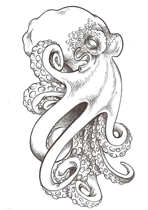 boat and octopus drawing best 25 octopus sketch ideas on pinterest pulpo image