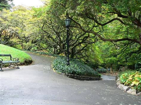 Botanical Gardens New Zealand Botanic Gardens Wellington New Zealand Been There Done That Pla