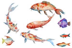 watercolor fish koi red carp illustrations on creative