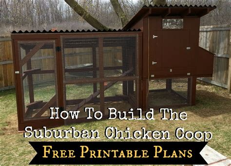 simple chicken house plans free with how to build a simple how to build the simple suburban chicken coop free