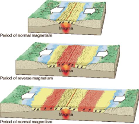 pattern of magnetic reversal cosscience1 lesson 10 6 testing plate tectonics