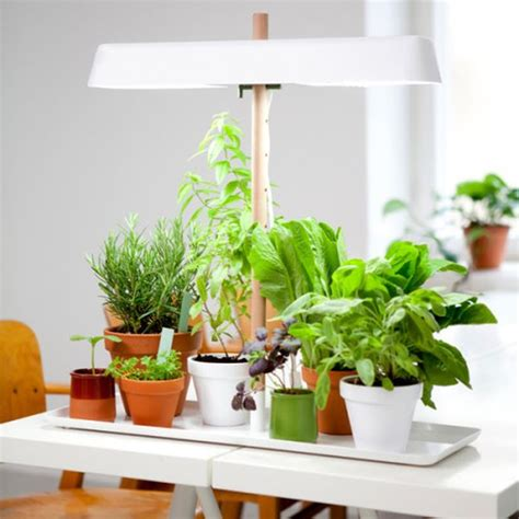 Kitchen Grow Lights Green Light A Minimalist Kitchen Light For Growing Your Herbs Home Crux