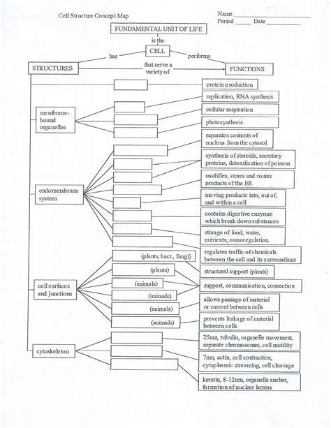 cell concept map answers solved name period cell structure concept map date fundam