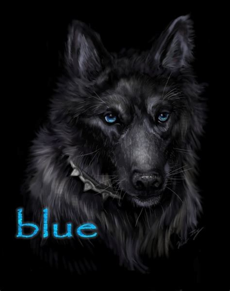 wolf s blue wolf s zerochan anime image board