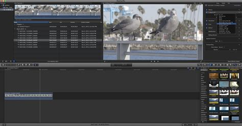 final cut pro grading crossing the bridge canon xc10 review digital