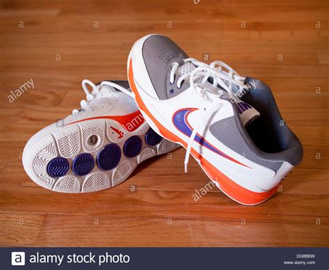 steve nash basketball shoes a pair of nike zoom go low steve nash s basketball