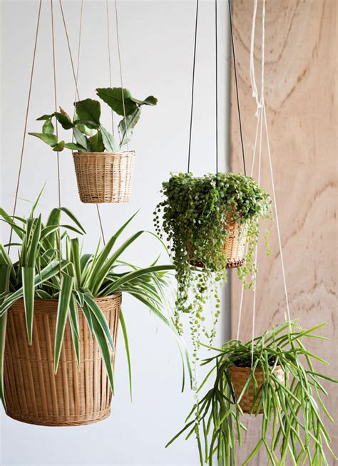 diy hanging plant pot diy inspiration baskets design and form