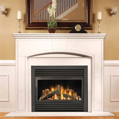 Fireplace Kits Indoor Gas by Napoleon Gd33 Napoleon Gd33 Fireplace Napoleon Gd33 Gas