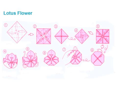 How To Make A Paper Lotus - origami lotus flower