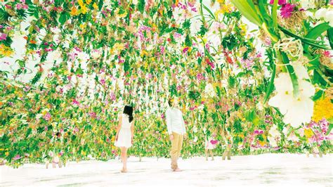 garden of flowers floating flower garden flowers and i are of the same root