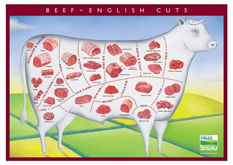 Types Of Mat by Whats Grays Butchers Of Thurcroft