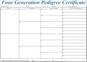 pedigree certificate template free pedigree certificate forms plain white 5 generation 10