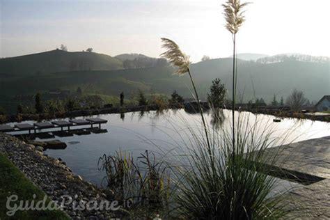 realizzare un laghetto in giardino come realizzare un laghetto balneabile nel tuo giardino