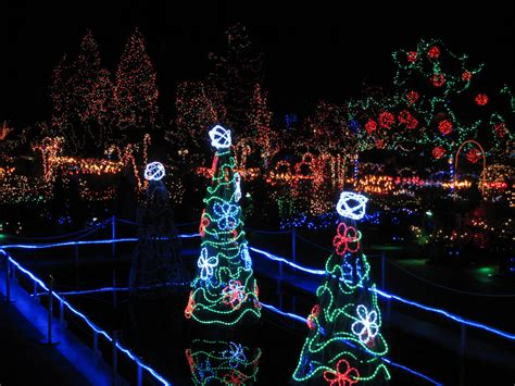 joe pool christmas lights lights tours burleson limousine