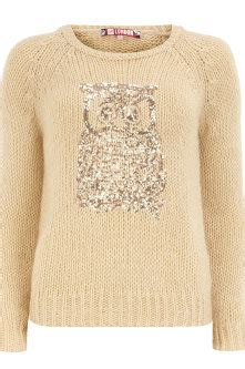 Dorothy Perkins Owl by Owl Jumper
