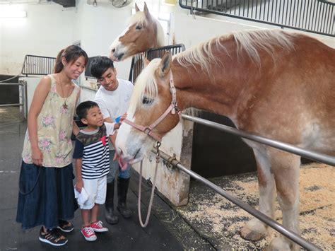 5 watchlist terbaik di bulan february greenscene co id 5 hotel keluarga terbaik di hong kong