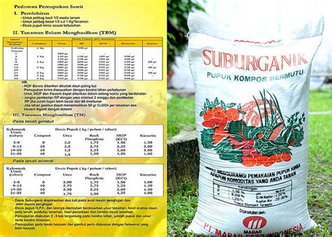 Feed Indonesia mabar feed indonesia pt trade promotion