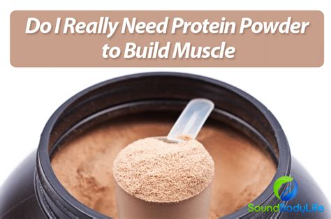 best protein to build and lose build gain weight increase energy lose weight