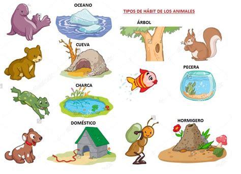 que significa habitat y tipos de habitat aprende f 225 cil