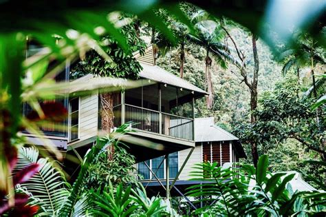 Eco Holidays In Eco Lodges by Daintree Ecolodge Spa Resort Daintree Eco Accommodation
