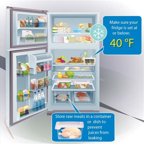 fridge layout guide food safety in refrigerator pokemon go search for tips