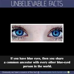 eye color facts facts