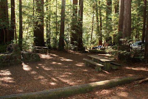 hiking  kids  marin samuel p taylor state park