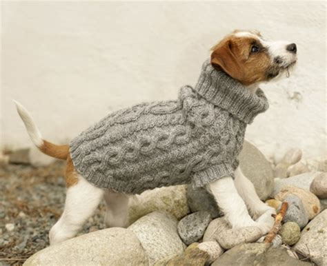wool pattern for dog coat free dog jumper patterns loveknitting blog