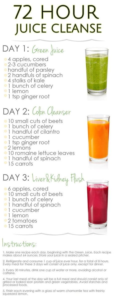 Gaiam Article 3 Day Clean Food Detox Plan by Diy 3 Day Juice Cleanse For Weight Loss Juicerblendercent