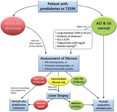 management  nonalcoholic fatty liver disease  patients